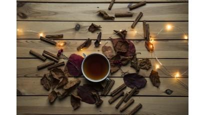 La stagione delle novità: l'autunno in Sicilia