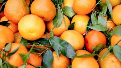Vivere sano in (zona) arancione